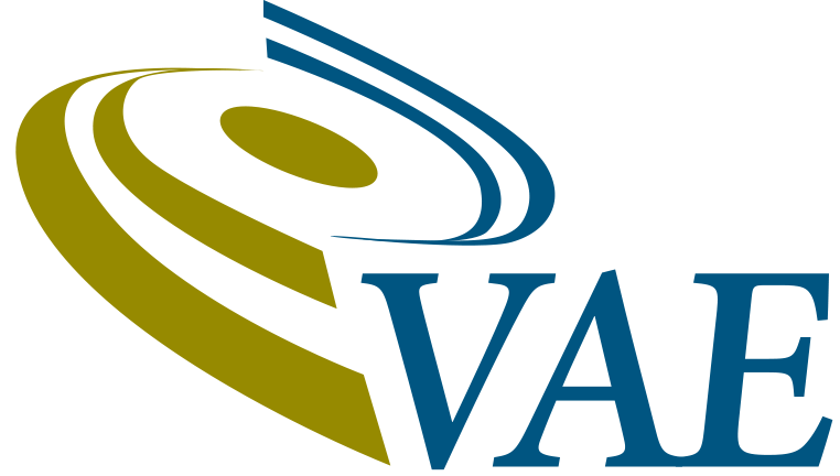 VAE IT Logo